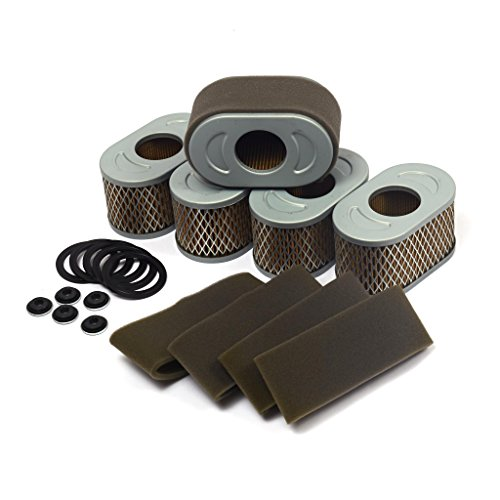 Briggs and Stratton 4239 Air Filter (5 of 797033)