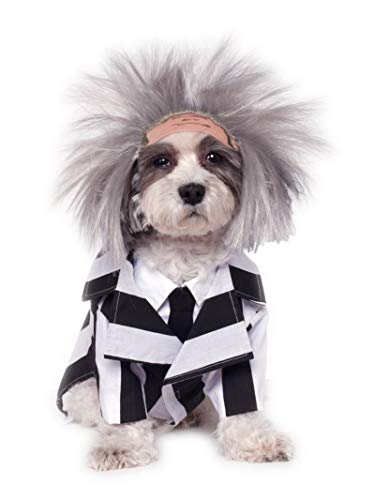 Beetlejuice Family Halloween Costume (Rubie's Beetlejuice Pet Costume,)