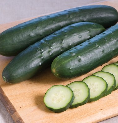 David's Garden Seeds Cucumber Slicing Corinto (Green) 25 Organic Hybrid Seeds