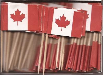 Canada Toothpick Flag Cupcake Toppers *Set of 20*