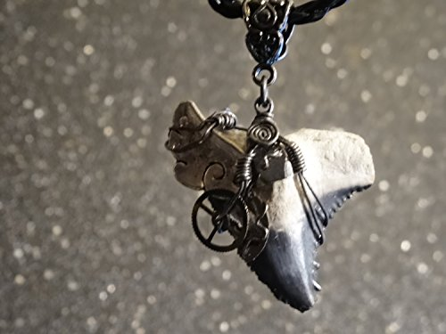 Real RARE Bone Valley Snaggletooth (Hemipristis), Goblin Shark Tooth Wrapped in Oxidized Annealed Steel Gears Steampunk Pieces Pendant Megalodon Era Not - Steampunk Era
