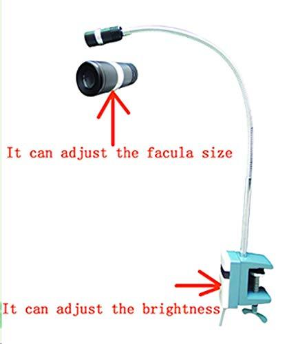 Supershu New LED 12W Medical Exam Surgical Examination Lamp by Supershu (Image #2)