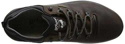 Grisport Warrior, Zapatos de Low Rise Senderismo para Hombre Marrón (Brown)