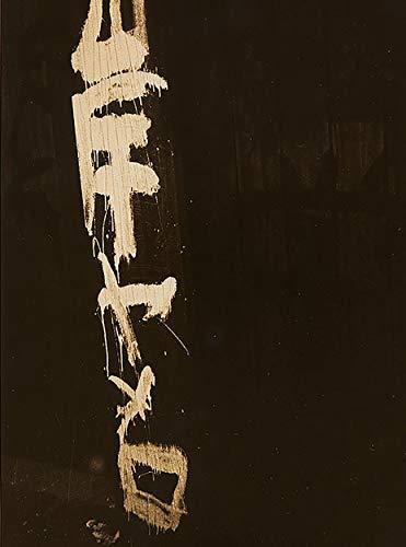 La mirada de las cosas.: Fotografía japonesa en el contexto de Provoke. (Libros de Autor) por VV.AA