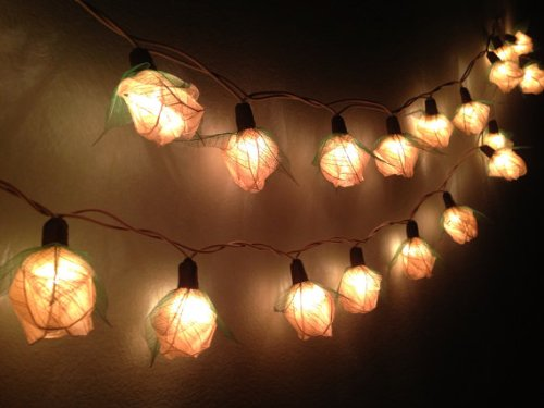 Thai Handmade 35 White Rose Flower Fairy String Lights Wedding Party Floral Home Decor 3.5m by My Fairy lights