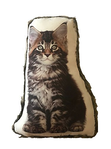 (Cat Themed Accent Pillow with Fur Trim, Longhair Kitten, Approx 14