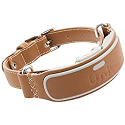 LINK AKC Smart Dog Collar - GPS Location Tracker, Activity Monitor, and More, Small (KITTN01)