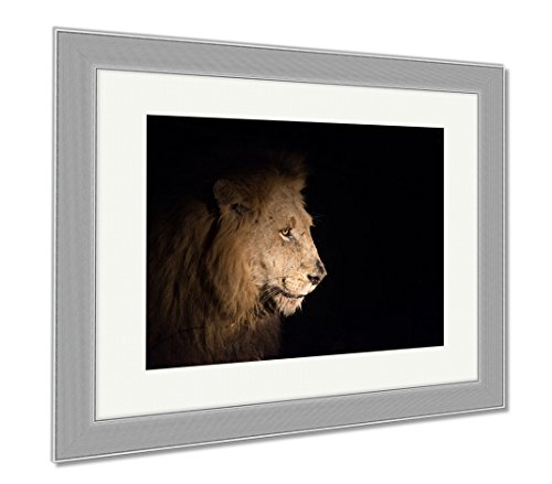 Ashley Framed Prints Lion At Night, Wall Art Home Decoration, Color, 26x30 (frame size), Silver Frame, - Ebony Panthera