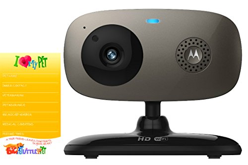 Motorola Pet Scout66 Wi-Fi HD Pet Monitoring Camera PLUS PET EMERGENCY Contact Information Magnet – VALUE BUNDLE Review