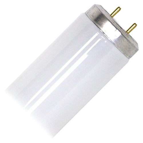 GE 10244 20W Fluorescent Lamps