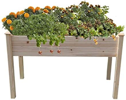 Amazon Com Yardeen Cedar Raised Bed Vegetable Herb Flower Gardening