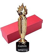 Trofee van harskristal Aangepaste creatieve trofee Innovatie fakkel trofee Maak belettering trofee Competitie trofee Geschenkpakket