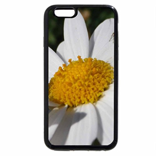 iPhone 6S / iPhone 6 Case (Black) beauty of flowers