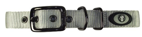 Hamilton Double Collar 1 Inch 20 Inch product image