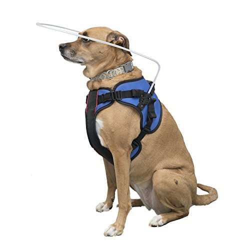 Blind Dog Halo Harness for Pets over 30 lbs by Walkin'