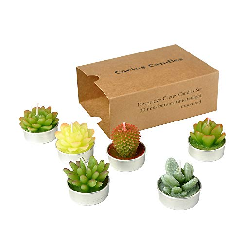 SanSeng Cactus Tealight Candles, Handmade Delicate Succulent Cactus Candles( Perfect for Birthday Party ,Wedding, Spa, Home Decor( 6 Pcs in -