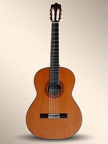 Guitarras clásicos Alhambra profesional 11P livree en – funda mesa ...
