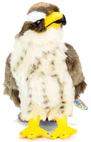 Perry the Peregrine Falcon | 10 Inch Hawk Stuffed Animal Plush Bird | By Tiger Tale Toys
