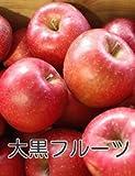青森県産 ふじ りんご 減農薬栽培 10kg 訳あり