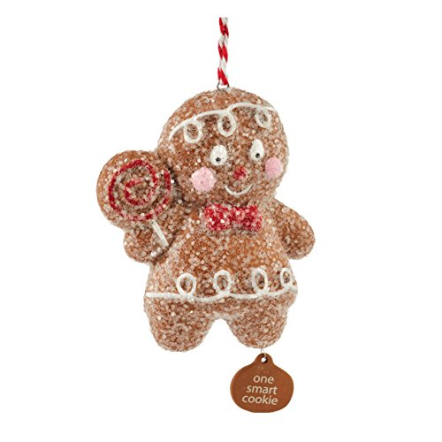 (Department 56 Ginger and Spice One Smart Cookie Ornament, 2.99 inch)