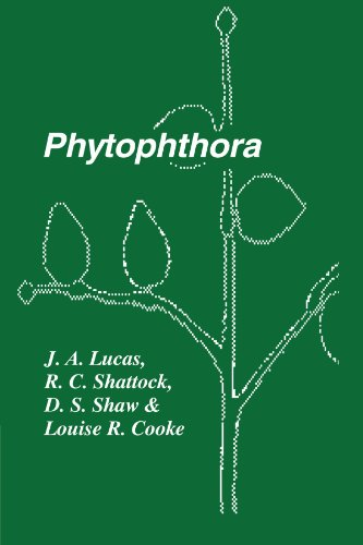 Phytophthora: Symposium of the British Mycological Society, the British Society for Plant Pathology and the Society of I