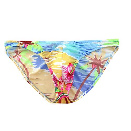 Kaniem Mens Briefs Funny Underwear Graphic Briefs Low Rise Swimwear Bikini Briefs Beach Swimsuit (S, - Hom Swimwear Mens