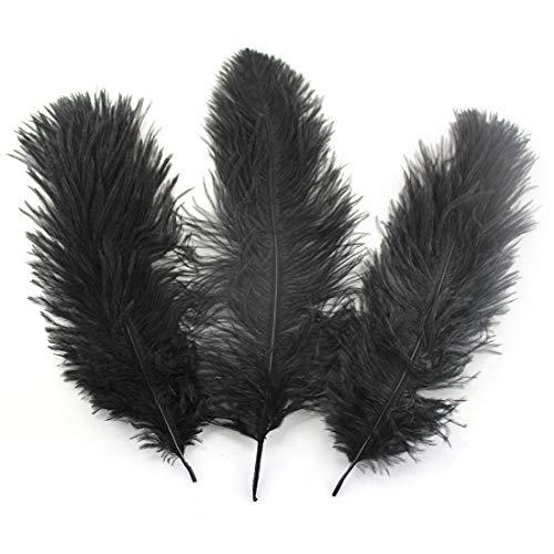 Daiwenwo 10pcs Ostrich Feathers 10-12 inch(25-30cm) Plume Home Decoration Wedding Stage (M10-Black) ()