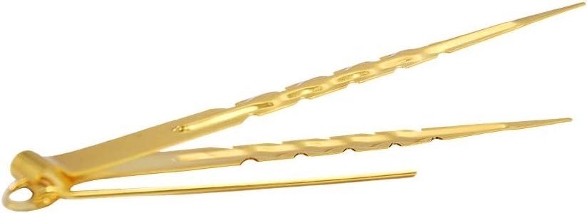 DENGHUI-SY, Shisha Hookah Pinzas de carbón Pinzas de Metal de carbón Pinzas Shisha Punch Narguill Accesorios Tubería de Agua Pinzas (Color : Type 1 Gold)
