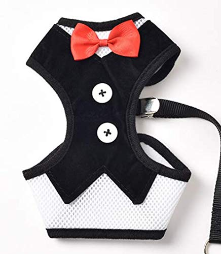 Do4Pets Cute and Classy Dog Doggie Tuxedo Bow Tie Harness Includes Free Matching Leash (Black, Medium)