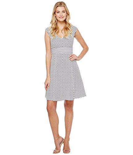 クリア細胞効果的[アドリアナパペル] Adrianna Papell レディース Cap Sleeve Stripe Fit and Flare Dress ドレス White/Blue Moon XL [並行輸入品]