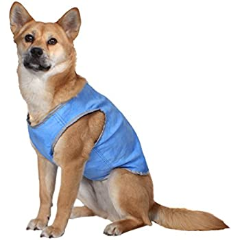 AKC Cooling Vest for Dogs, Large, Blue