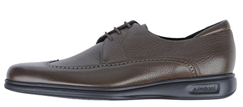 a.testoni Crazy Karibu Calf Wingtip Luxury Sneaker (11.5 US, Argilla)