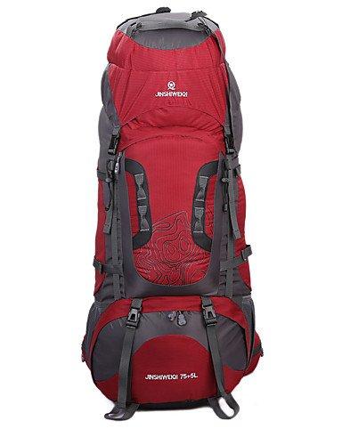 ZQ 80 L Tourenrucksäcke/Rucksack / Travel Organizer / Rucksack Camping & Wandern DraußenWasserdicht / Schnell abtrocknend / tragbar /