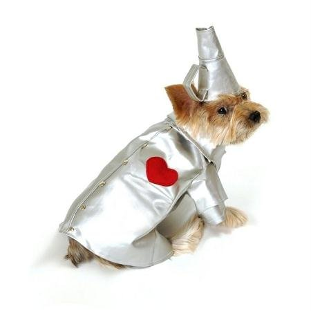 Anit Accessories 12-Inch Tin Puppy Dog Costume, Small