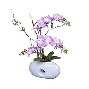 IMIEE Artificial Phaleanopsis Arrangement with Vase Decorative Orchid Flower Bonsai