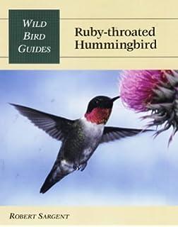 The Ruby-throated Hummingbird (Corrie Herring Hooks)