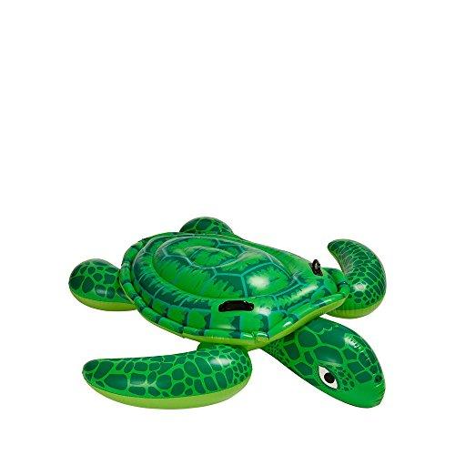 Cavalcabile tartaruga 56524