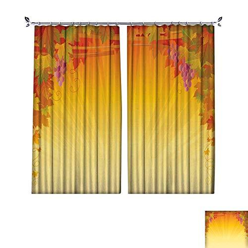 DragonBuildingMaterials Patterned Drape for Glass Door Autumn Vineyard Banner Frame Sunset Grapes Vector Illustration W120 x L96