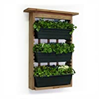 Algreen Garden View, Vertical Living Wall Planter