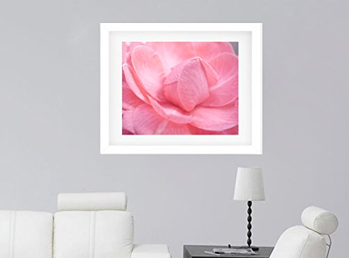 Pastel Pink Camellia Flower Macro Photography, Nursery Wall Art, Baby Girl Room Decor, Modern Floral Art Print, Fine Art Photography, Shabby Chic Decor Picture