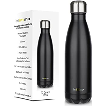Amazon Com New H2go Force Stainless Steel 17 Oz Double