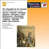 Magnificent Mr Handel