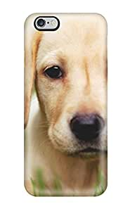 Durable Defender Case For Iphone 6 Plus PC Cover(labrador Retriever Dog )