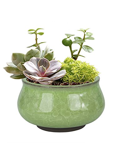 Dahlia 3.5 Inch Mini Crackle Glaze Ceramic Succulent Planter/Plant Pot/Flower Pot, Green