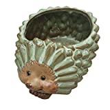Calunce Cute Animal Shape Planter Ceramics Succulent Flower Pot Decorative Plant Pot Hedgehog (M)