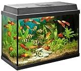 Juwel Rekord 600 Aquarium