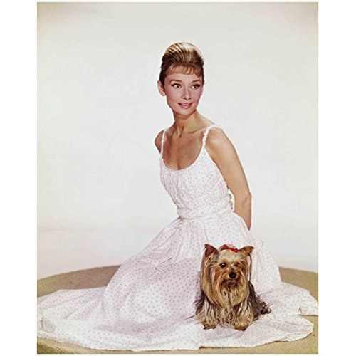 Audrey Hepburn Posing with Her Dog in Pink Polka Dot Dress 8 x 10 Photo ()
