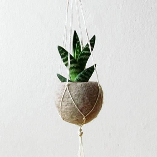 Hanging planter/Macrame plant hanger/Beige Felt planter/air plant vase/modern home decor/CHOOSE YOUR COLOR 1