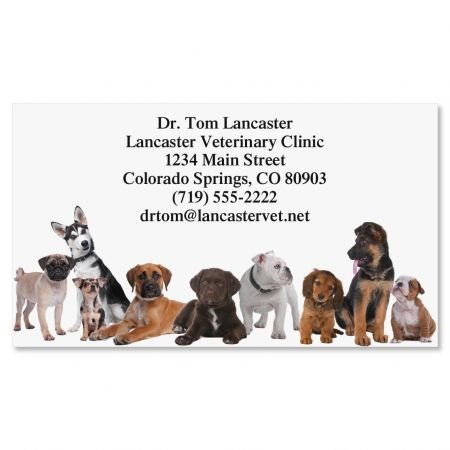 Bow Wow Business Cards - Set of 250 2