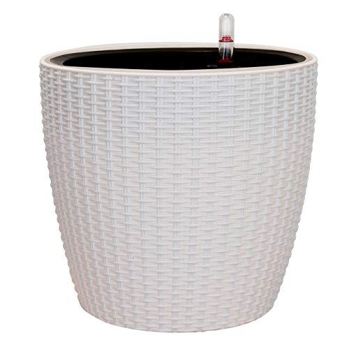11 inch pot - 5